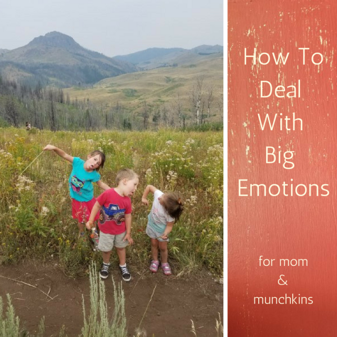 How ToDeal With Big Emotions